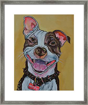 Framed Print featuring the painting Adopt A Pit Bull by Patti Schermerhorn