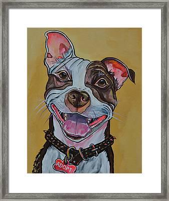Adopt A Pit Bull Framed Print by Patti Schermerhorn