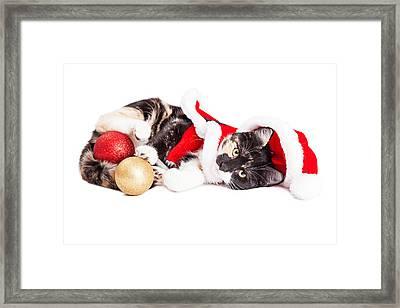 Adorable Christmas Calico Santa Kitty Framed Print by Susan Schmitz