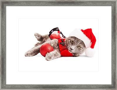 Adorable Christmas Kitten Over White Framed Print by Susan Schmitz