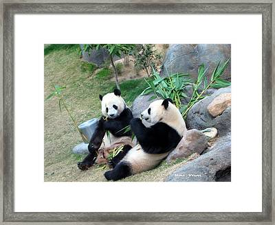 Adorable Pandas Framed Print by Ming Yeung