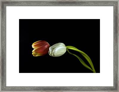 Adore Framed Print by Elsa Marie Santoro