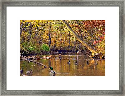 Adventure And Discovery Framed Print by Frozen in Time Fine Art Photography