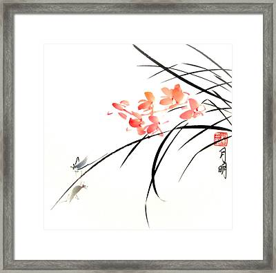Adventurous Hoppers Framed Print by Ming Yeung