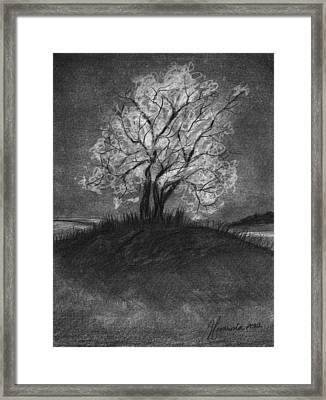 Advice From A Tree Framed Print by J Ferwerda