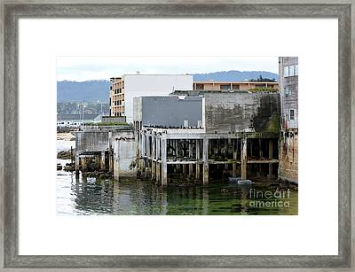 Aeneas Ruins In Springtime At Cannery Row Framed Print