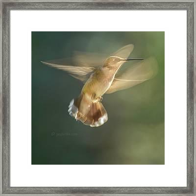 Aerial Dancing.... Framed Print