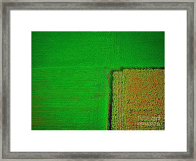 Aerial Farm Mchenry Il  Framed Print by Tom Jelen