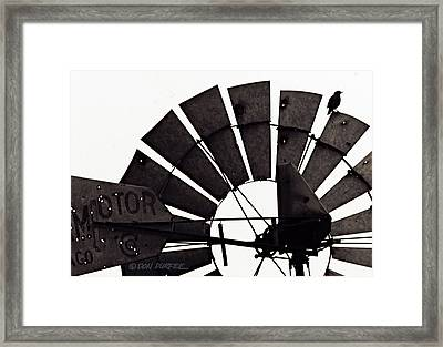Framed Print featuring the photograph Aermotor Bird by Don Durfee