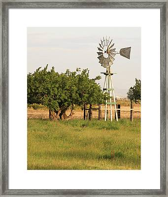 Aermotor San Joaquin County Ca Framed Print by Troy Montemayor