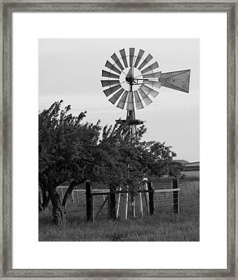 Aermotor Windmill San Joaquin County Ca Framed Print by Troy Montemayor