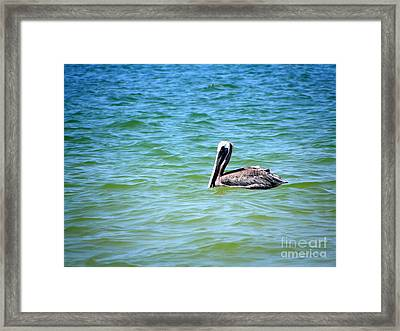 Framed Print featuring the photograph Afloat by Terri Mills