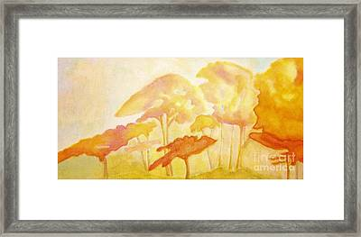 Africa Framed Print by Mimo Krouzian