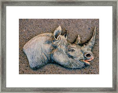 African Black Rhino Framed Print by Dy Witt