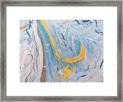 African Dolphin Coast Framed Print