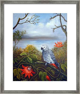 African Grey With Flowers Framed Print