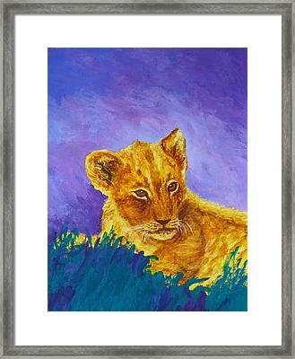 African Lion Cub Framed Print by Margaret Saheed