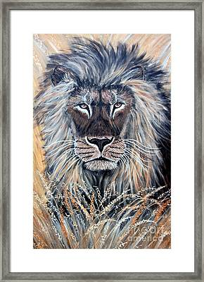 African Lion Framed Print by Nick Gustafson