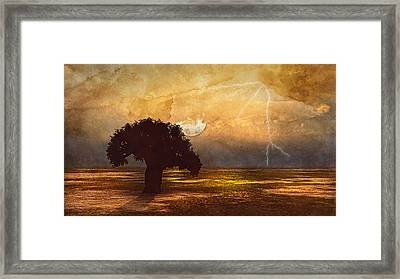 African Memories  Framed Print by Georgiana Romanovna