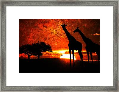 African Safari Framed Print by Richard Farrington