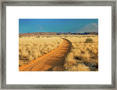 African Sand Road Framed Print