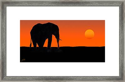 African Sunset Framed Print by Joe Costello