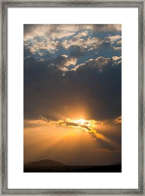 African Sunset Framed Print by Paco Feria