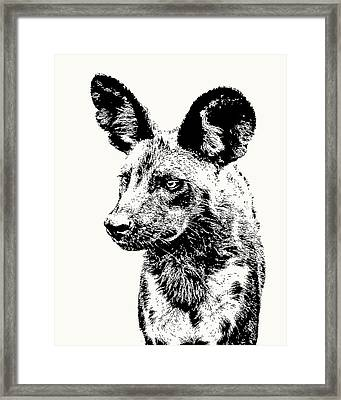 African Wild Dog On Alert Framed Print