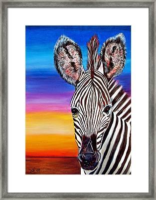 African Zebra Aura Framed Print by Donna Proctor