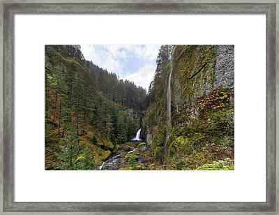 After A Rainstorm Framed Print by David Gn