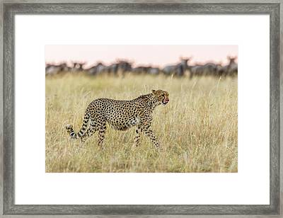 After Framed Print