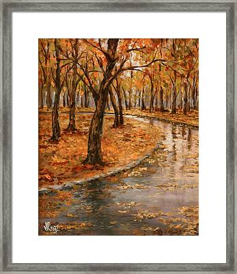 After Rain,walk In The Central Park Framed Print