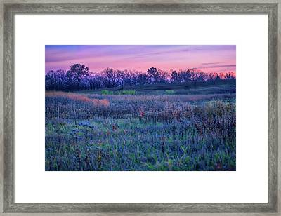 After Sunset - Blue Hour At Retzer Nature Center Framed Print by Jennifer Rondinelli Reilly - Fine Art Photography