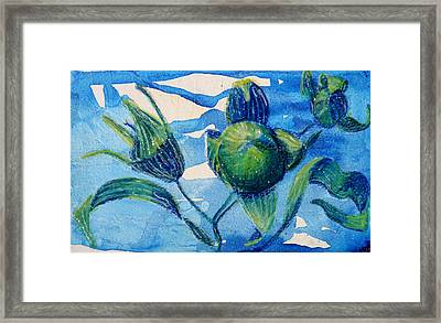 After The Blossom Framed Print by Diana Davenport