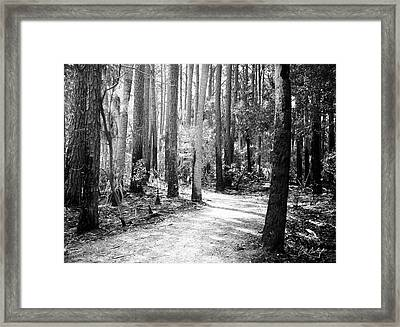 After The Burn  Framed Print by Phill Doherty