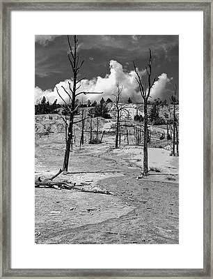 Framed Print featuring the photograph After The Fire by Nigel Fletcher-Jones