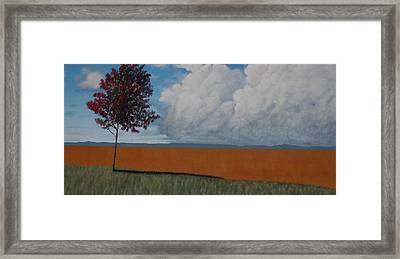After The Harvest Framed Print by Candace Shockley
