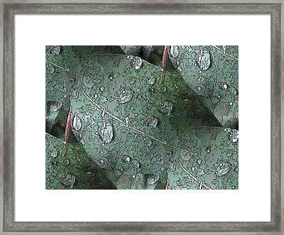 After The Rain 4 Framed Print by Tim Allen