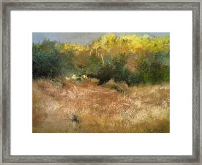 After The Rain Framed Print by Anita Stoll