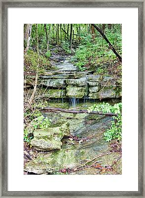 Framed Print featuring the photograph After The Rain by Cricket Hackmann