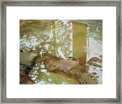 After The Rain Framed Print by Denise Ivey Telep