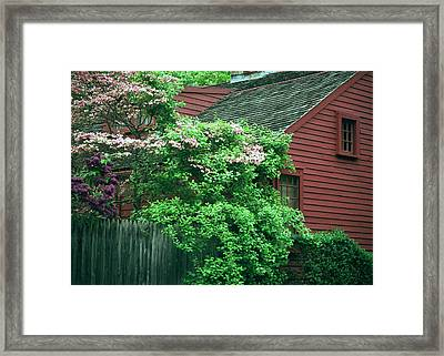 Framed Print featuring the photograph After The Rain by Kenneth Campbell