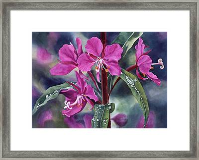 After The Rain Framed Print by Sharon Freeman