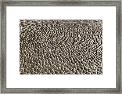 After The Sea Has Gone Framed Print by Olivier Le Queinec