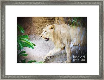After The Shower Framed Print by Judy Kay