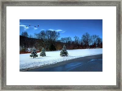 After The Snow Framed Print