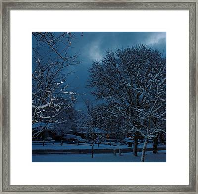 After The Snow Framed Print by Wanda Fuchs
