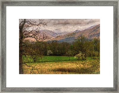 Framed Print featuring the photograph After The Spring Rain by Rebecca Hiatt
