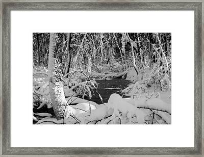 After The Storm Framed Print by Andrew Pacheco
