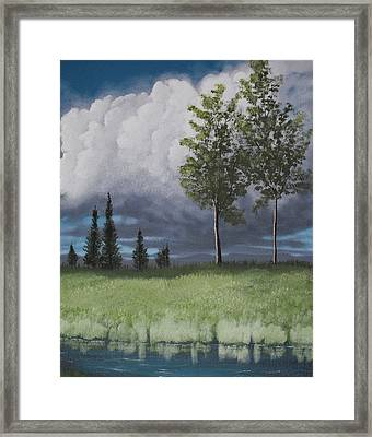 After The Storm Framed Print by Candace Shockley